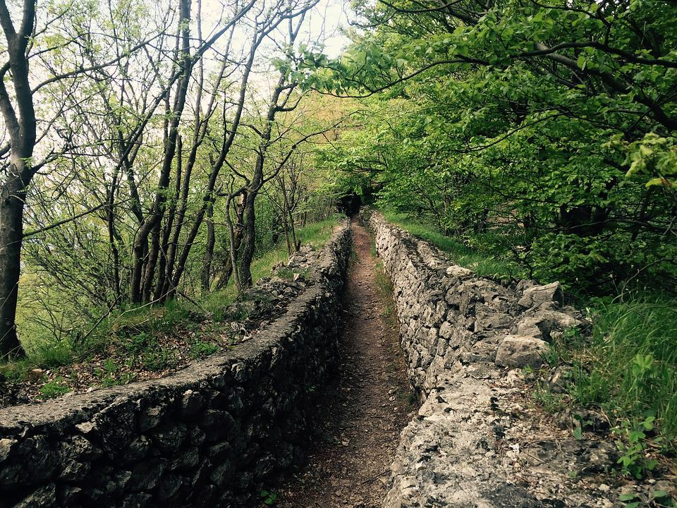 Trail, Mountain, Nature, Trenches, Trench