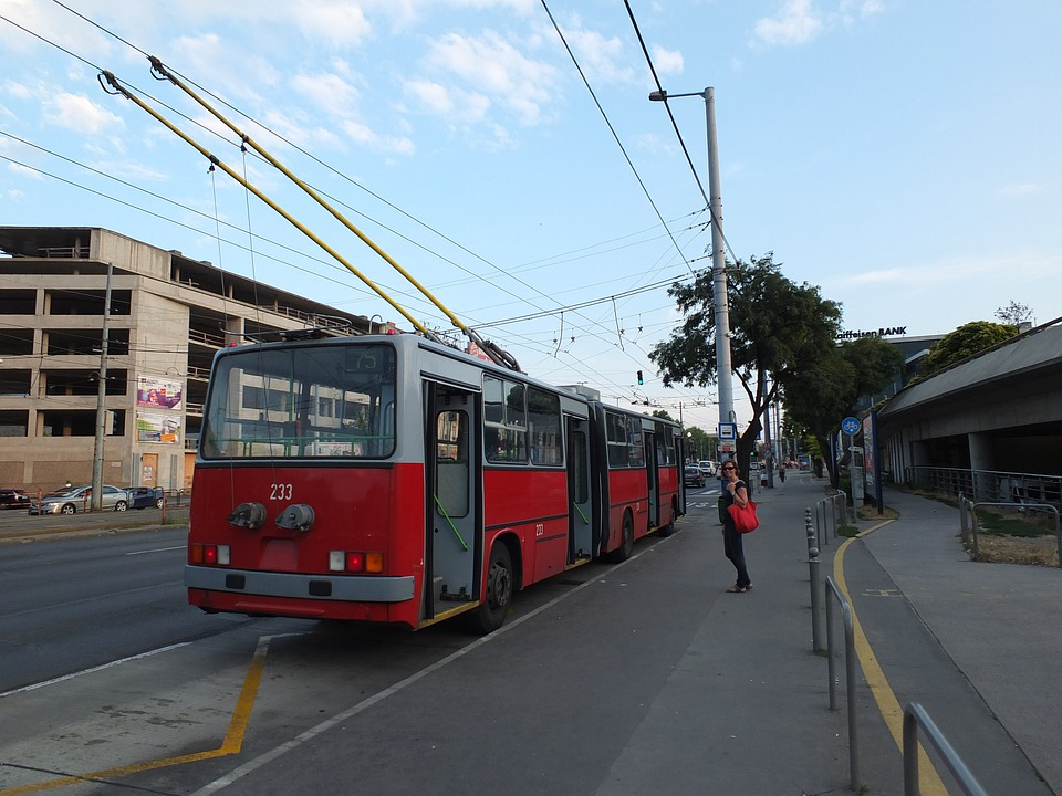 Trolleybus, Stop, Budapest, City, Public Transportation