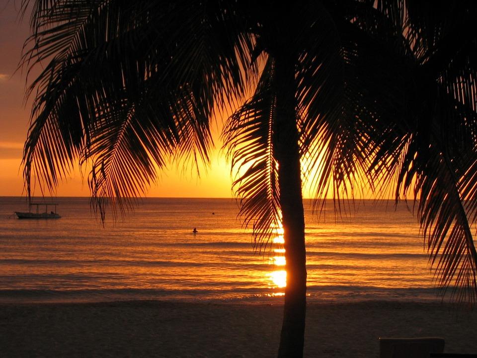 Sunset Beach Jamaica Negril Palm Tree Tropical