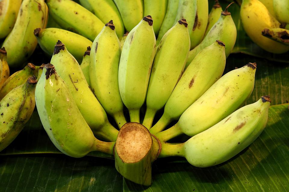 Bananas, Fruit, Cultivated Banana, Tropical, Health