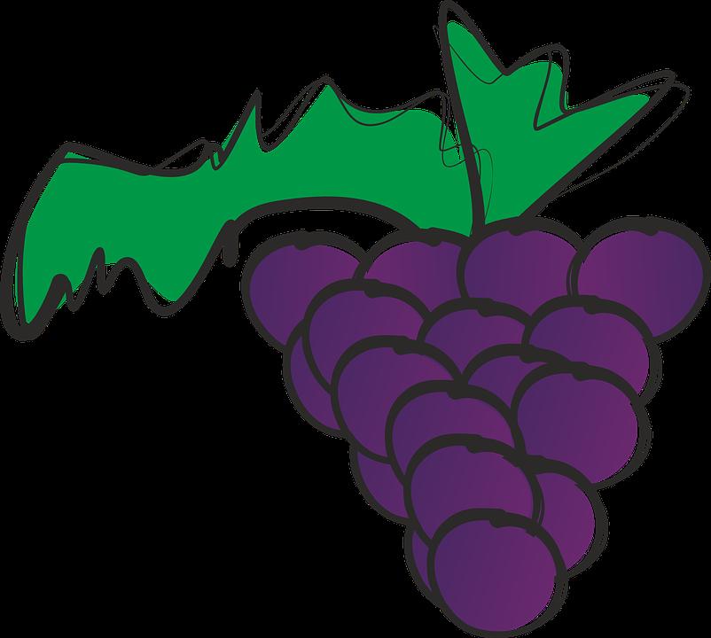 Bunch Of Grapes, Grapes, Fruit, Tropical Fruit