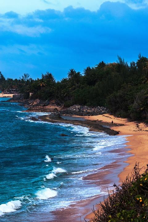 Beach, Ocean, Coast, Waves, Sea, Tropical, Island