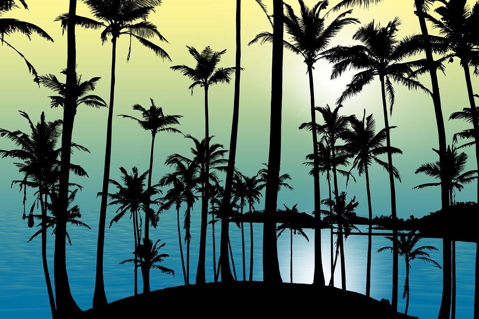 Nature, Tropical, Sunset, Beach, Sea, Calm, Relaxation