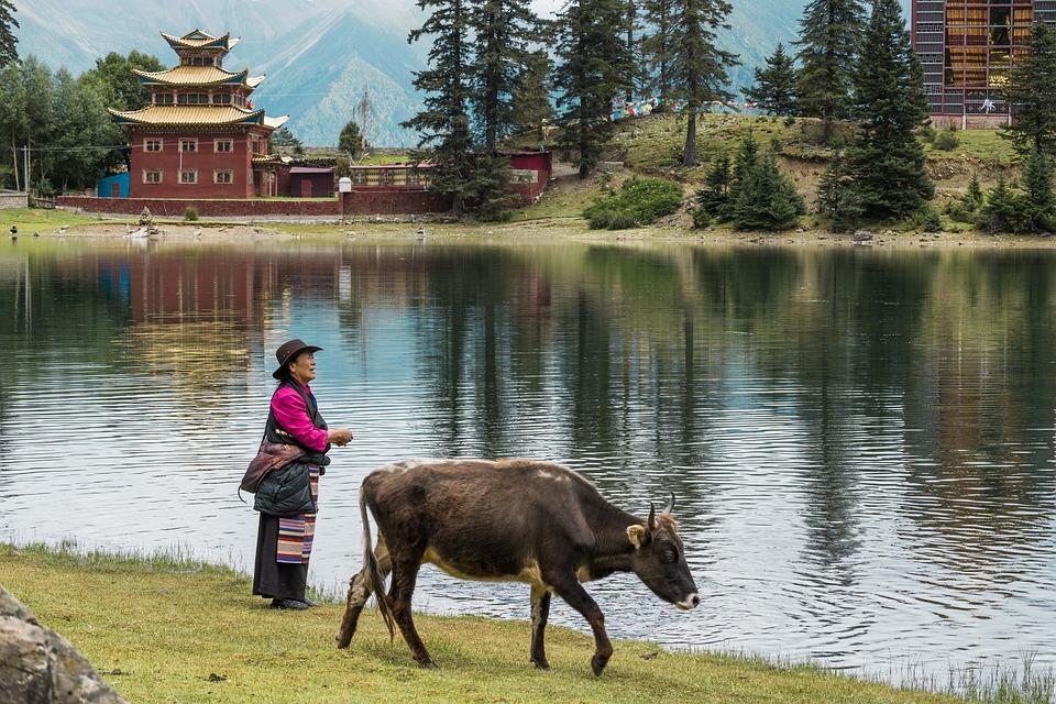 Cuoka Lake, Tsokha Monastery, Countryside, Lake Cuoka