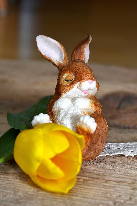 Hare, Dekohase, Tulip, Flower, Yellow Flower, Deco