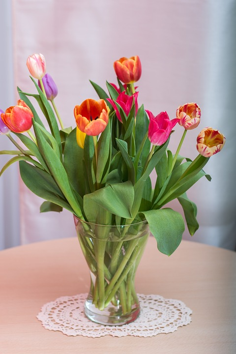 Tulips, Federal Government, Bouquet, Flowers, Flower
