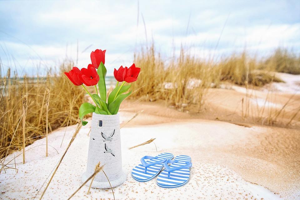 Free Photo Tulips Seaside Vase Sand Beach Flip Flops Flowers Max Pixel