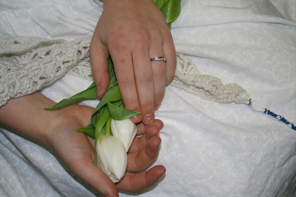 Tulips, Hands, Wedding, Flower, Bouquet, Spring, Love