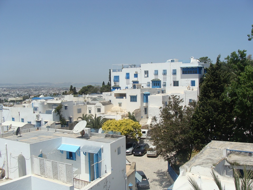 Arabic, Houses, Blue, Panorama, White, City, Tunis