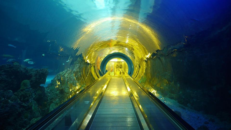 Taiwan, Hualien, Nmmba, Tunnel, Overnight, Travel