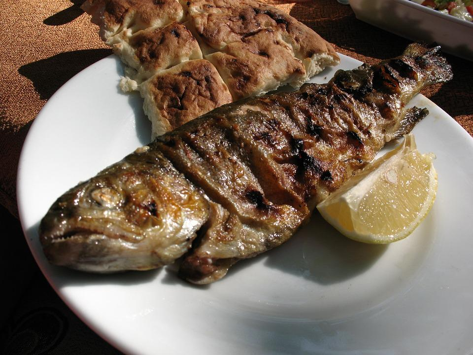 Food, Fish, Turkey, Journey, Vacation, Yummy, Fry