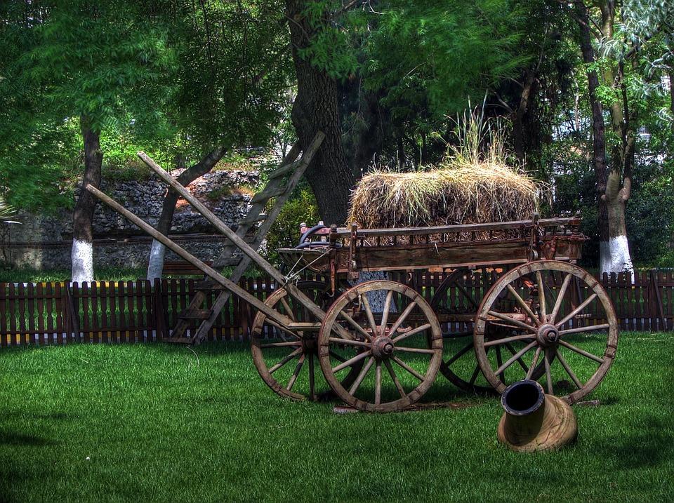 Turkey, Park, Wagon, Cart, Old, Hay, Grass, Trees