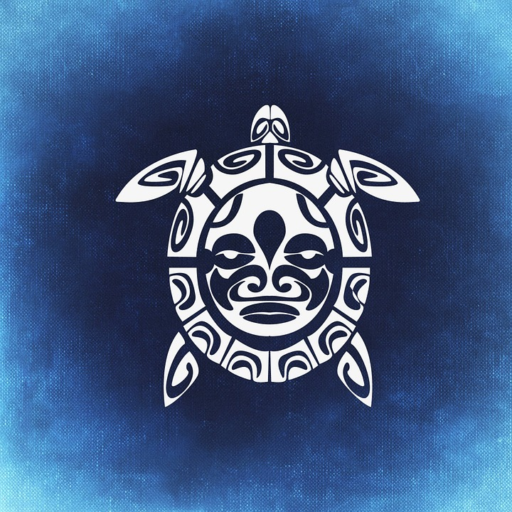 Turtle, Abstract, Beautiful, Background, Blue