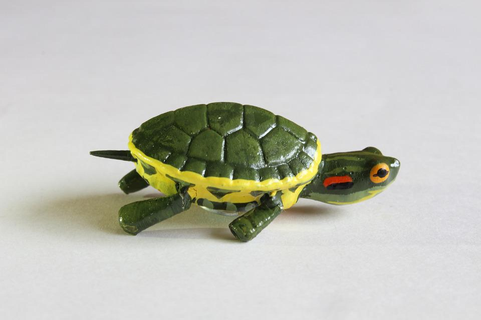 Turtle, Crafts, Decoration