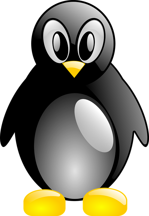 Penguin, Linux, Tux, Animal, Bird, Antarctica