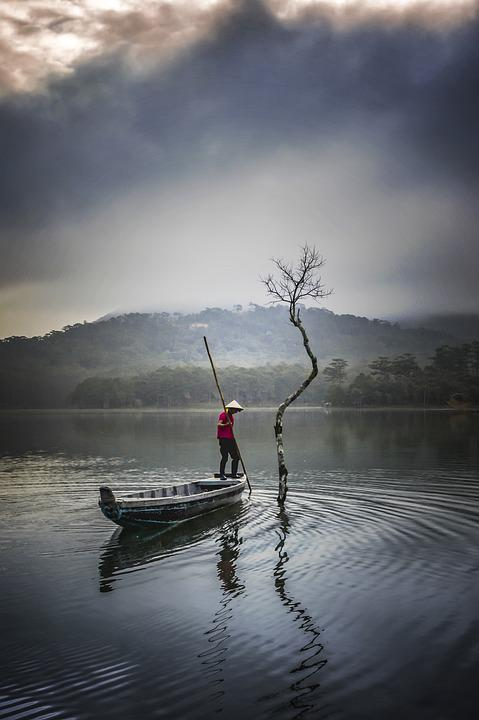 Tree, Fisherman, Fishing, Lake, Tuyen Lam, Da Lat