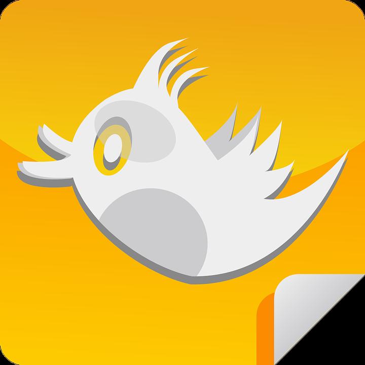 Android App, Sticker, Tweet, Twitter, Bird, Social