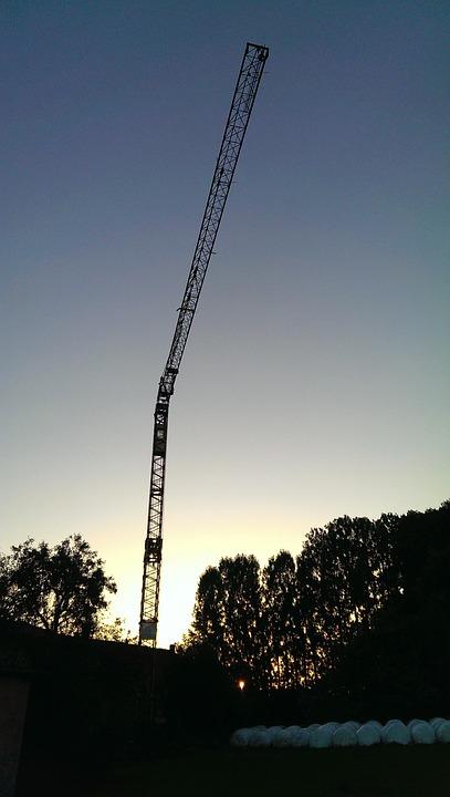 Crane, Night, Twilight