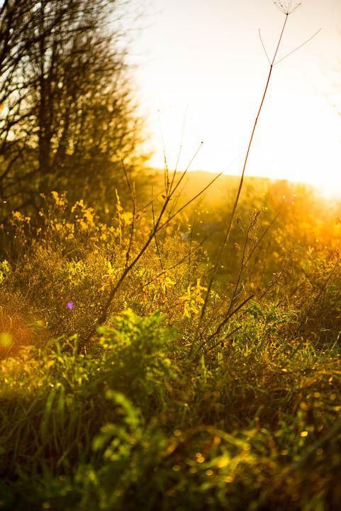 Sky, Autumn, Landscape, Sunset, Twilight, Mood, Nature