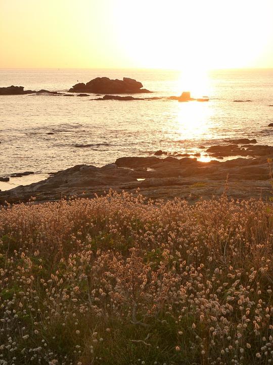 Sun, Ocean, Sea, Beach, Sky, Twilight, Nature, Travel