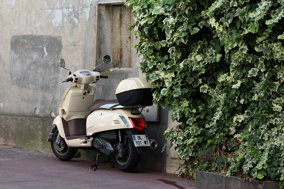 Vespa, Roller, Two Wheeled Vehicle, Ivy