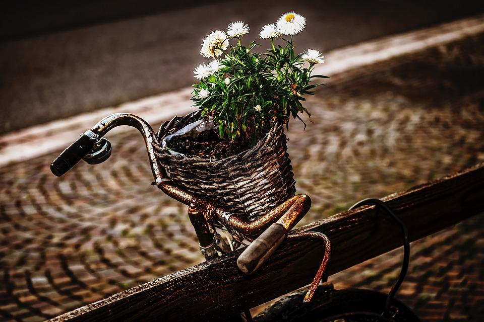 Bike, Two Wheeled Vehicle, Wheel, Old, Turned Off