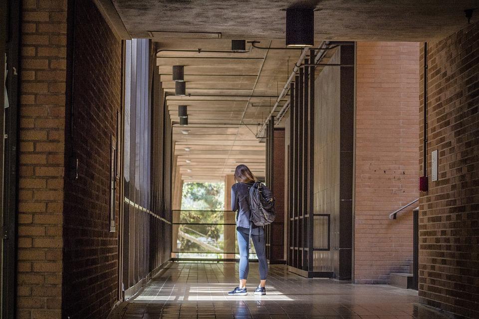Ucla, College, Library, Brick, America, School, Antique
