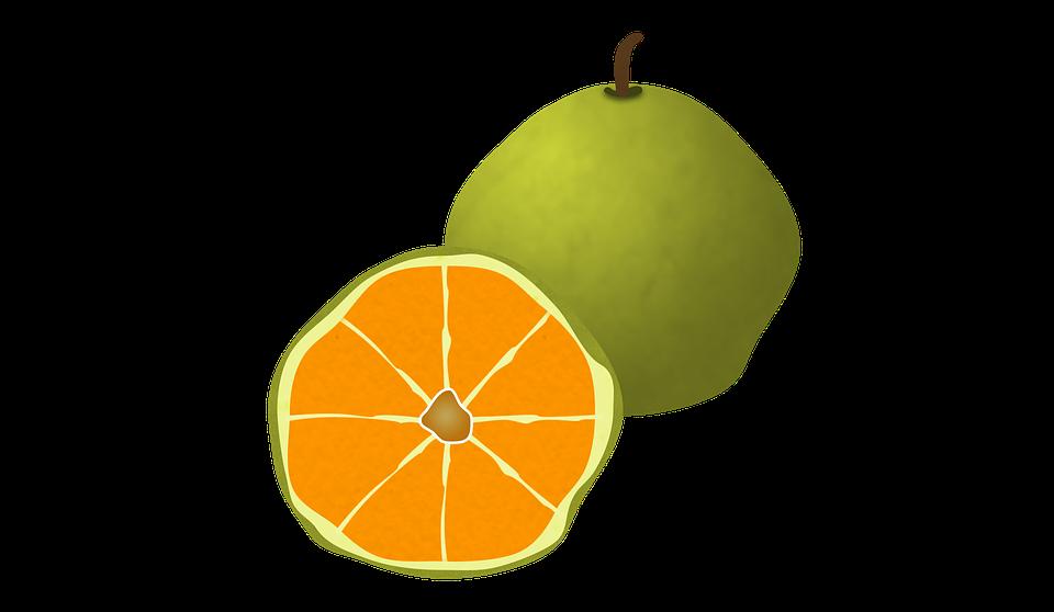 Ugli Fruit, Fruit, Citrus, Organic, Juicy, Orange