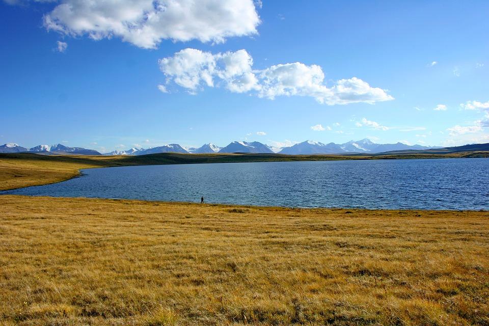 Cordinal Bass, Altai, Ukok