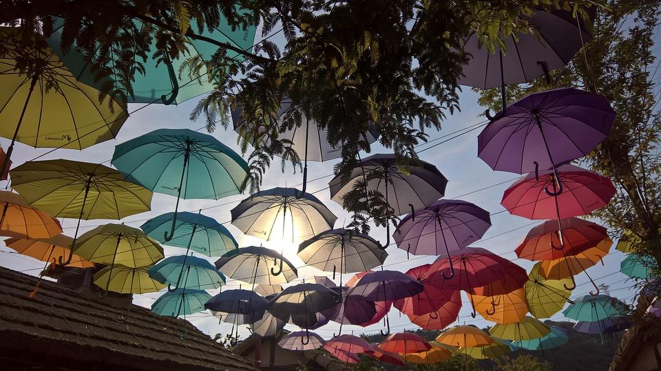 Park, Themepark, Theme, Umbrella