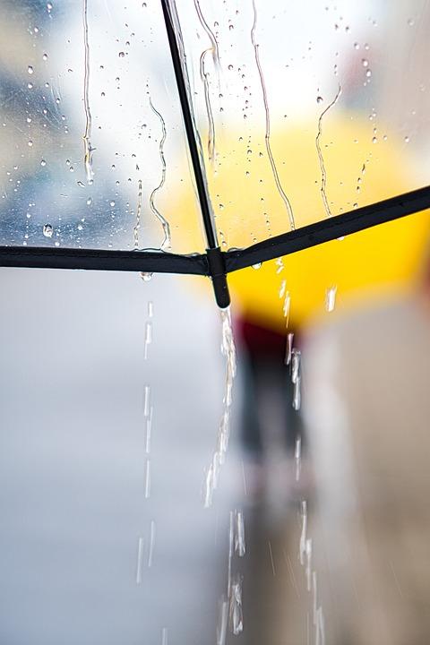 Rainy Day, Umbrella, Walk, Rain, Weather, Raindrop