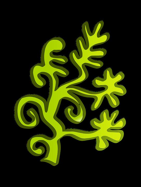 Grass, Green, Plant, Underwater, Coral