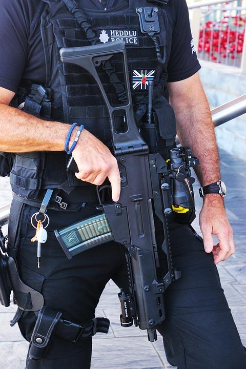 Policeman, Officer, Police, Law, Uniform, Cop, Man