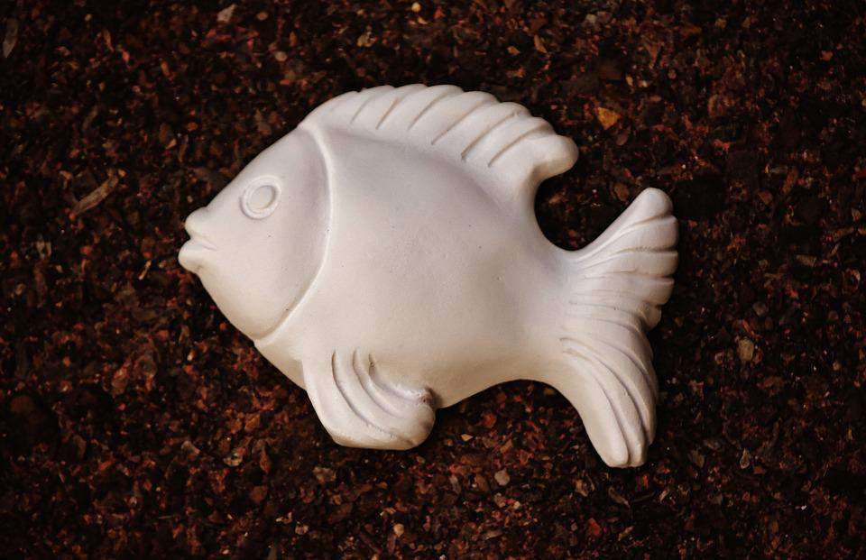 Fish, Gypsum, Blank, Unpainted, White