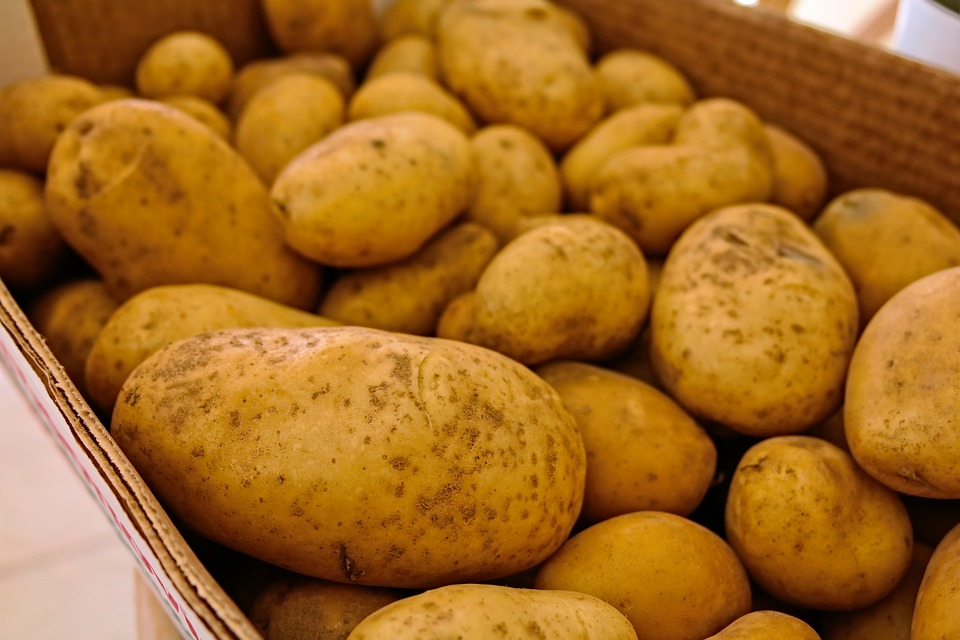Potatoes, Vegetables, Food, Raw, Unpeeled, Vegetarian