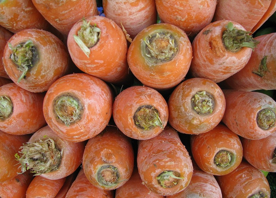 Carrots, Unwashed, Vegetables, Healthy, Agriculture