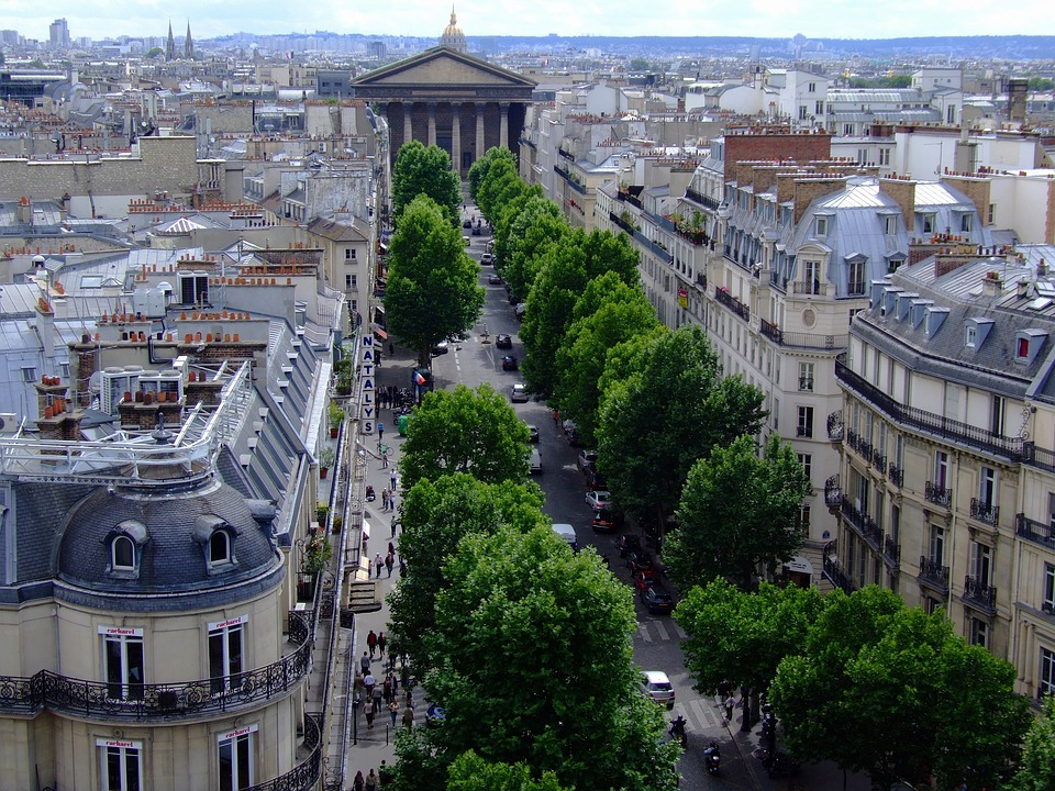 Paris, France, City, Trees, Buildings, Urban, Streets