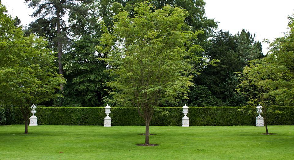 Stone Urns, Urns, Lawn, Trees, Hedge, Trimmed, Outdoor