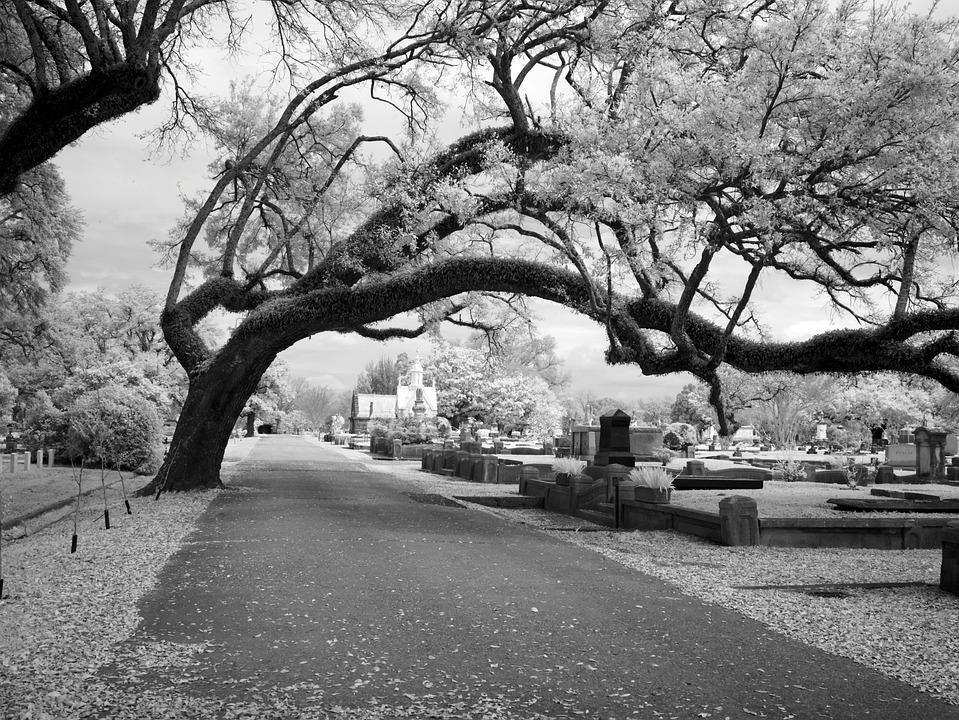 Cemetery, Magnolia Cemetery, Mobile, Alabama, Usa