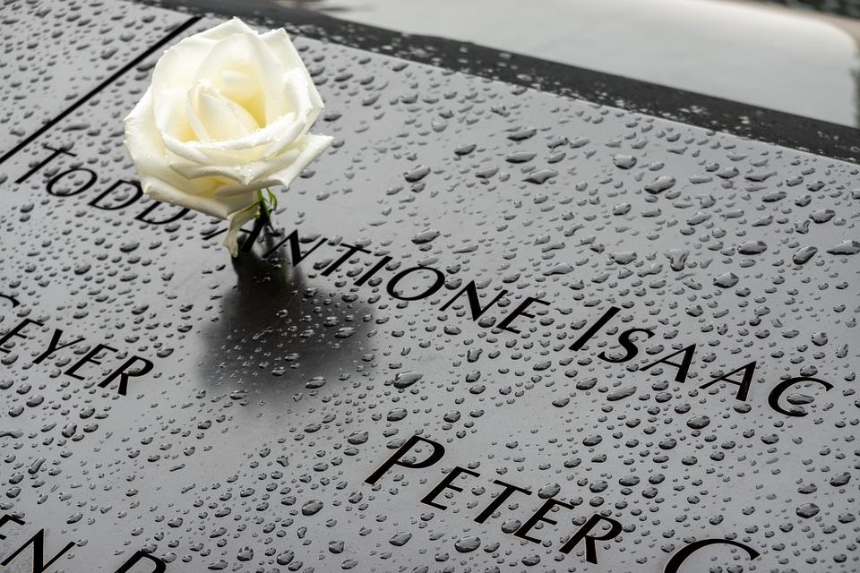 Rose, Memory, Mourning, Memorial, Usa, Farewell