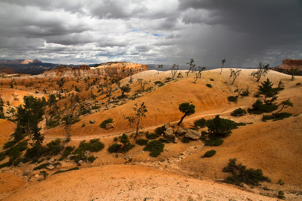 Bryce Canyon, National Park, Park, Crossusa, Usa