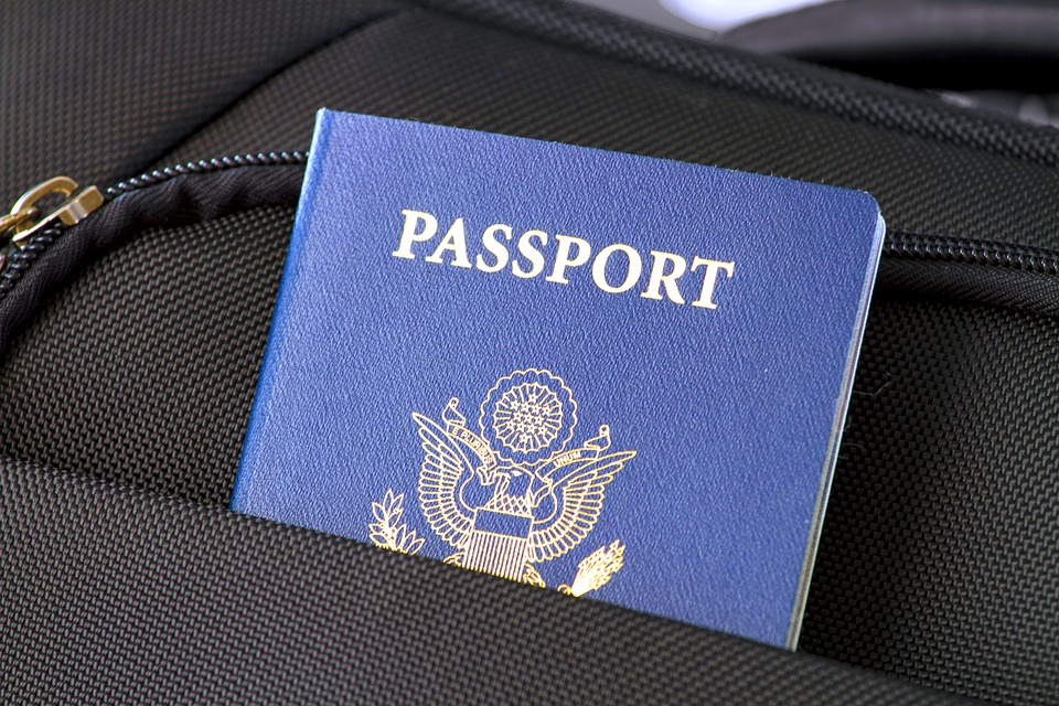 Passport, Flag, Travel, Visa, Identification, Usa