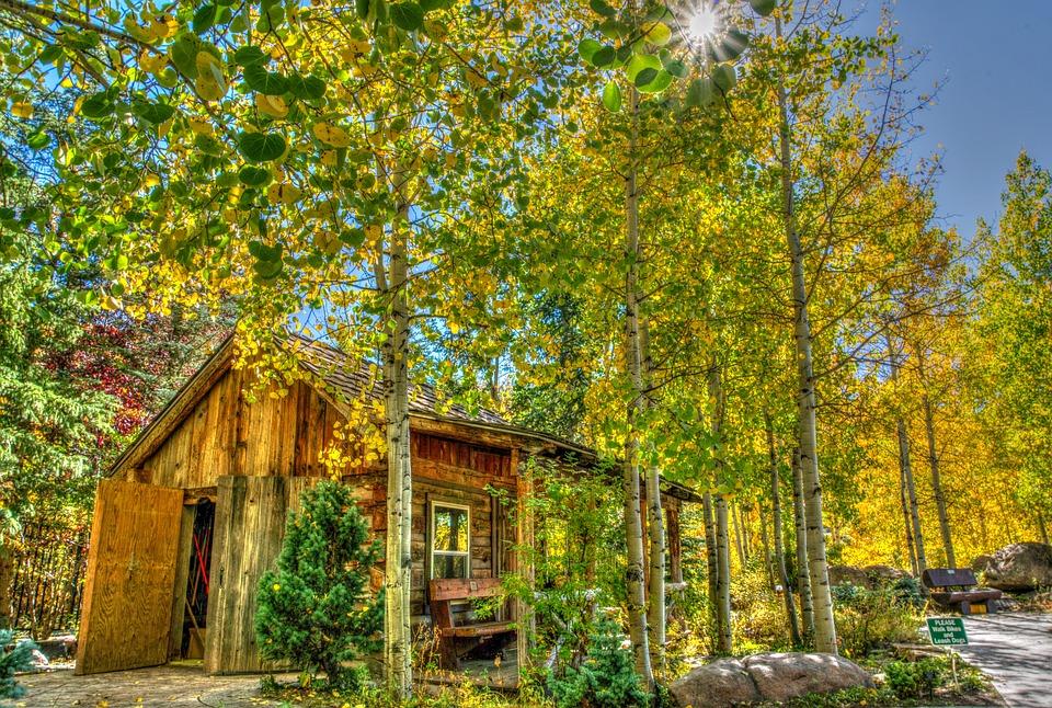 Vail, Colorado, Foliage, Log Cabin, Landscape, Usa