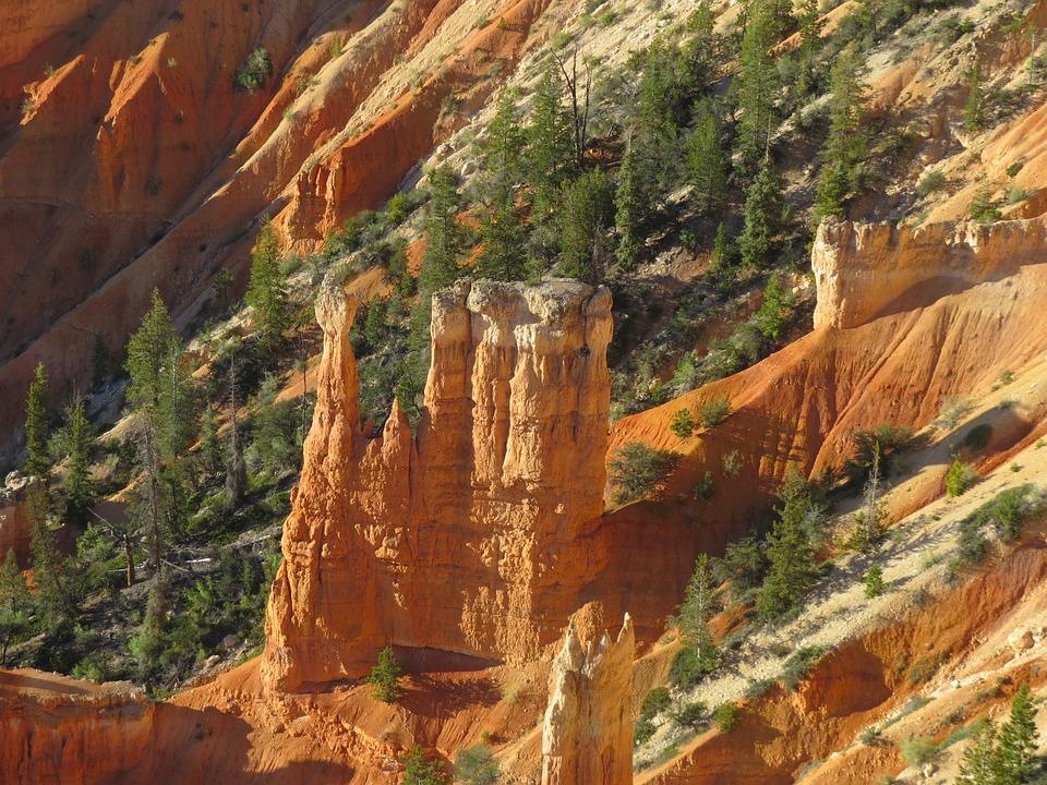 Bryce Canyon, Hiking, Desert, Utah, Orange