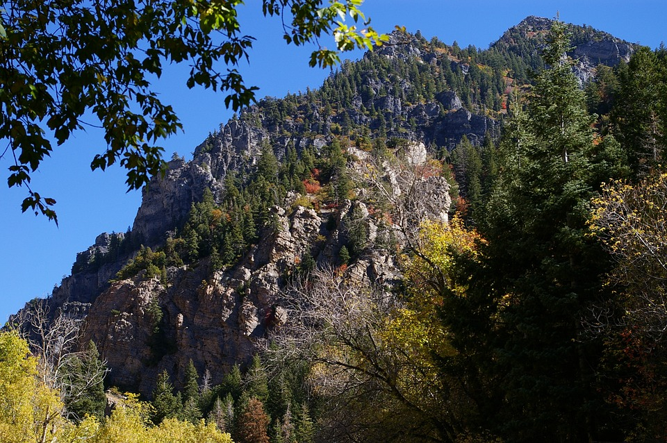 Wasatch, Mountains, Utah, Nature, Trees, Rocky, Scenic