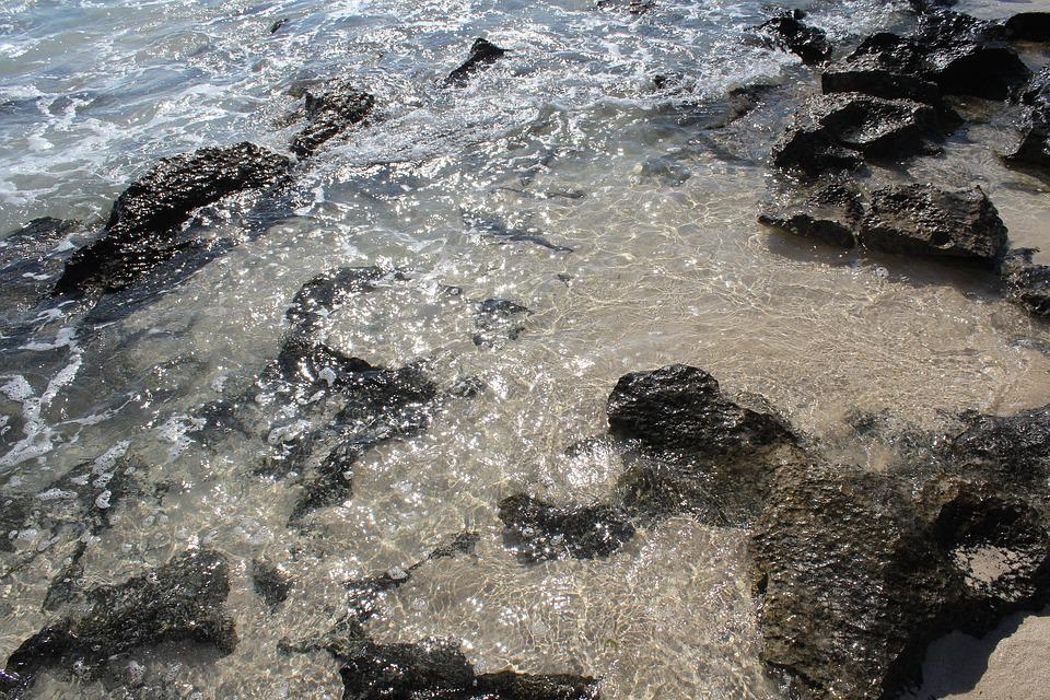 Water, Ocean, Beach, Island, Coast, Tropical, Vacation