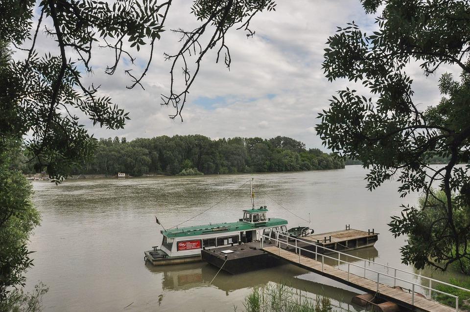 Hungary, River, Landscape, Tree, Scenery, Vacation