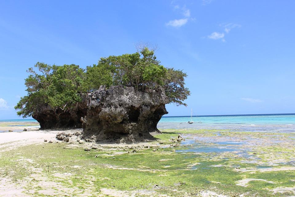 Pemba Island, Holiday, Vacation, Sea, Sun, Water, Ocean
