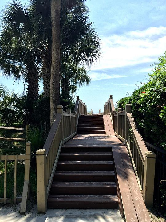 Stairs, Boardwalk, Palm Tree, Vacation, Access