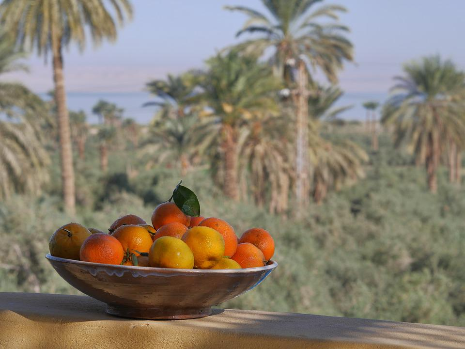 Oasis, Fayoum, Egypt, Fruits, Palm Trees, Vacations